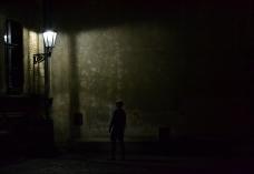 shadow stalker